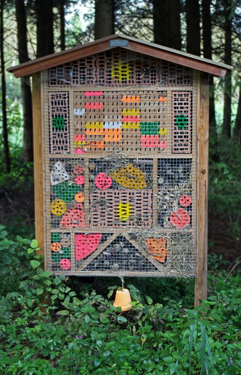 полезные насекомые сада и огорода 1