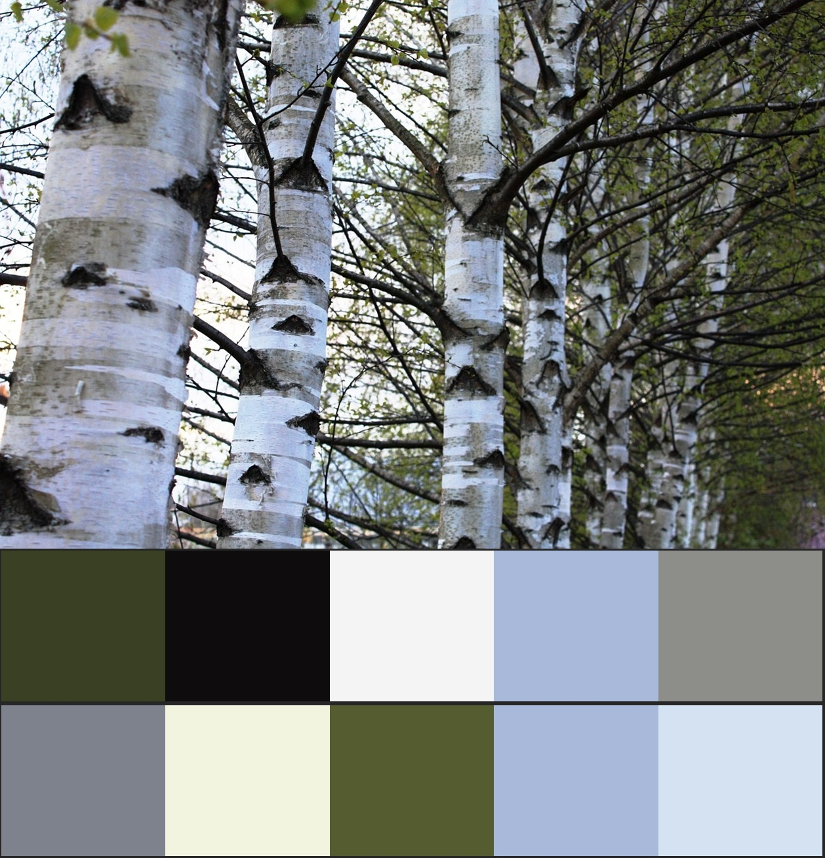сочетание серого цвета в природе 8-vert