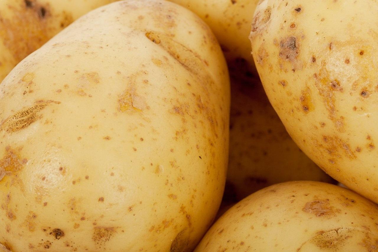 сорта картофеля 3