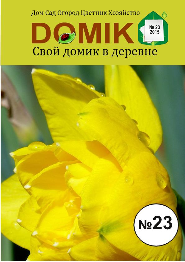 журнал Свой домик в деревне 23-1025