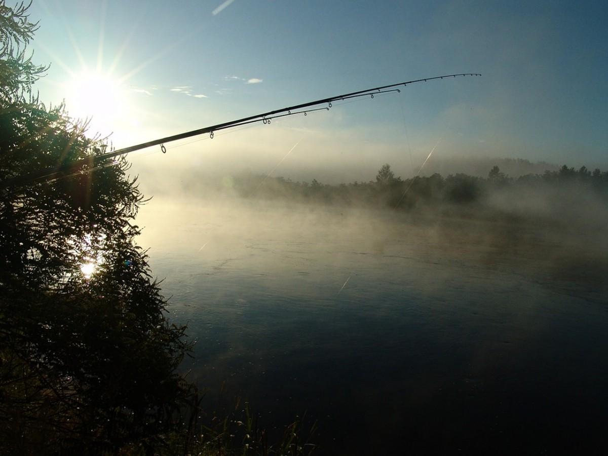 рыбалка летом 3