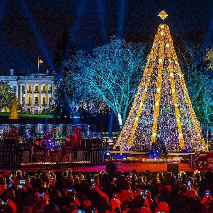 елки в мире 14 вашингтон