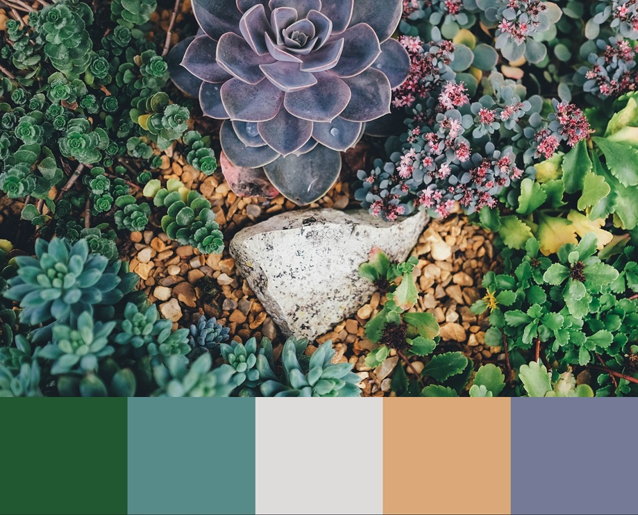 Цвет Limpet shell, палитра сочетания цвета и оттенков 5