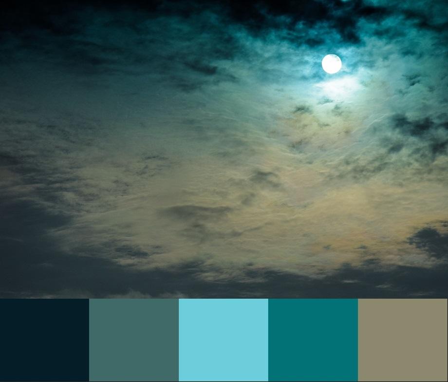 Cvet Limpet shell, палитра сочетания цвета и оттенков 8