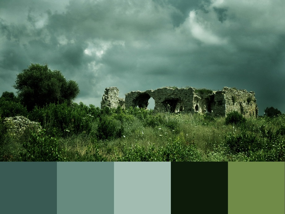 Цвет Limpet shell палитра сочетания цвета и оттенков