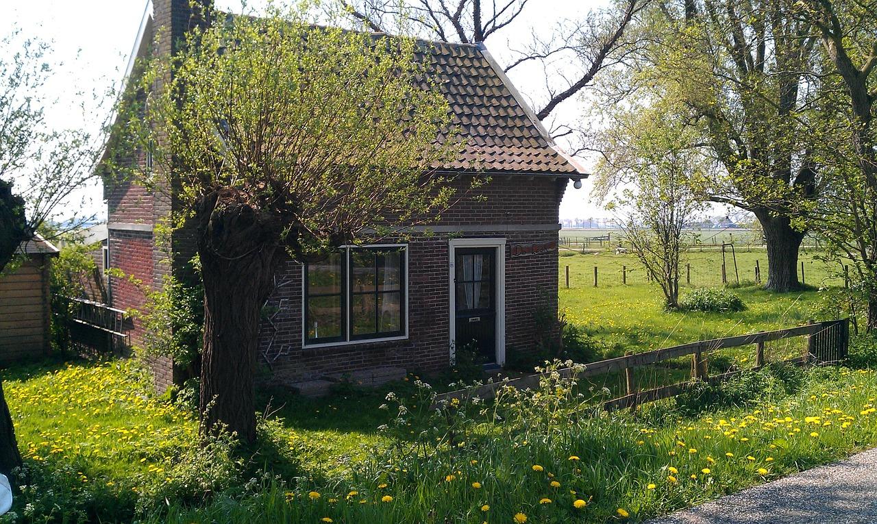 домик в деревне весной фото 12