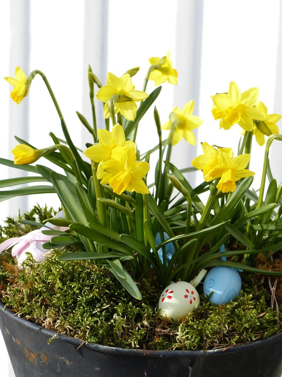 яйца на пасху, пасхальные украшения фото 19
