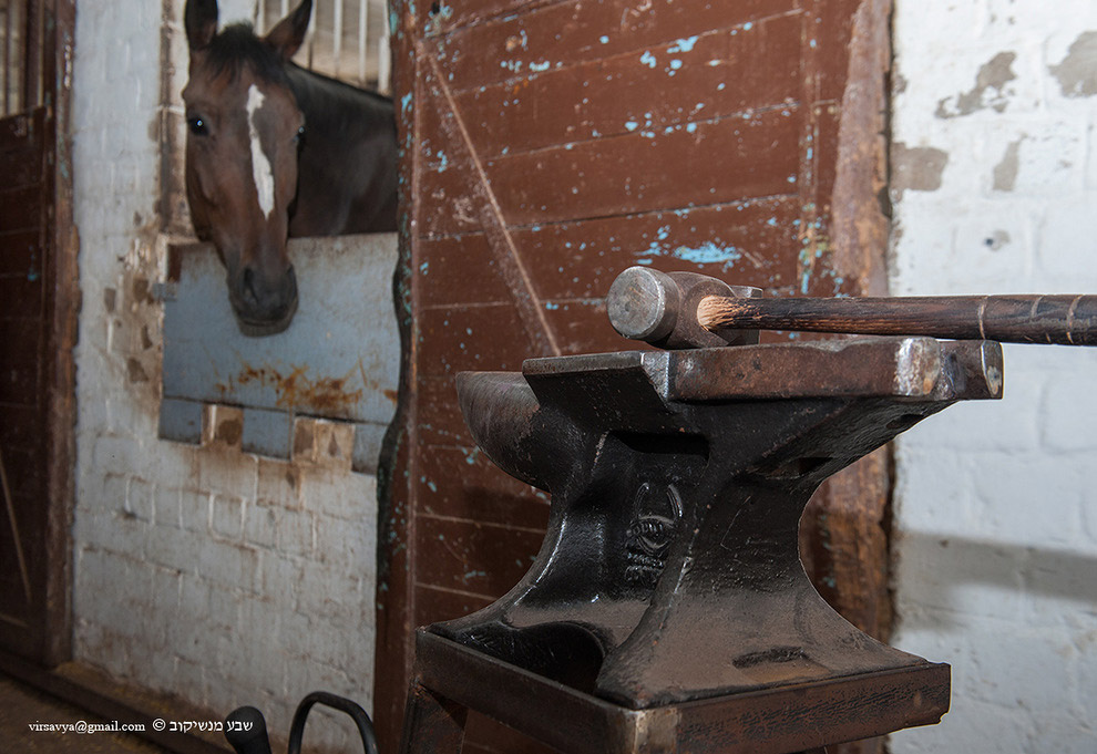 ковка лошадей наковальня