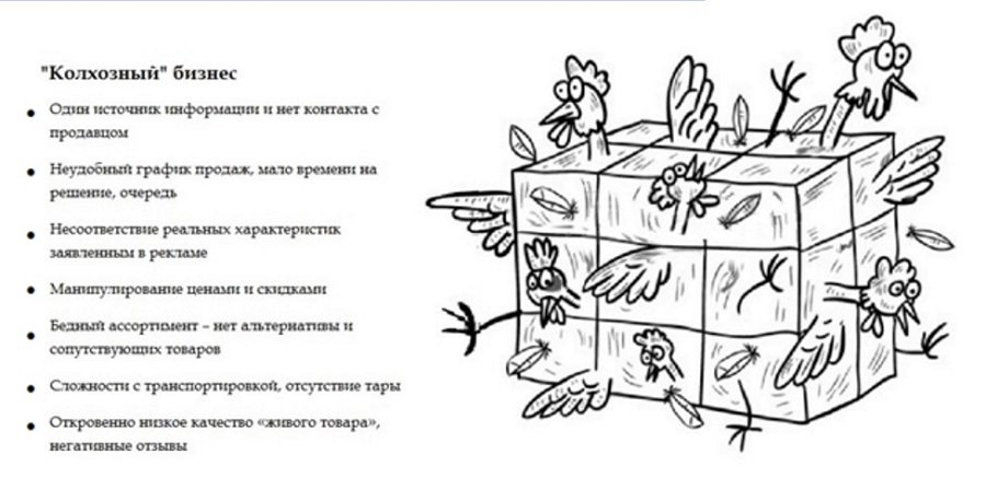 biznes-v-derevne-4