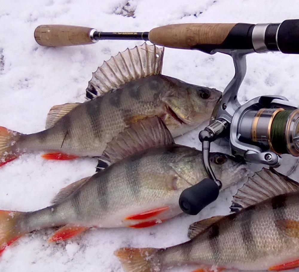 рыбалка 00