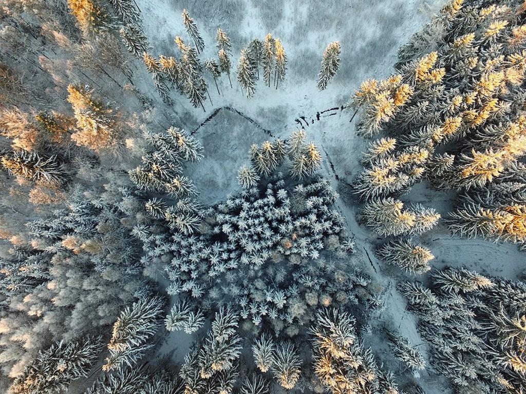 Красивая природа: лучшие фотографии конкурса Siena International Photography Awards 2017 - 8
