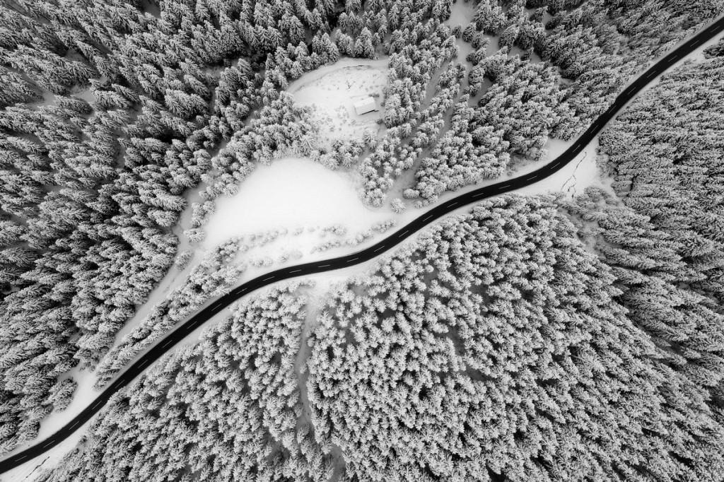 Красивая природа: лучшие фотографии конкурса Siena International Photography Awards 2017 - 16