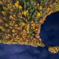 Красивая природа: фото Siena International Photography Awards 2017