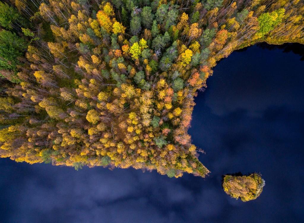 Красивая природа: лучшие фотографии конкурса Siena International Photography Awards 2017 - 6