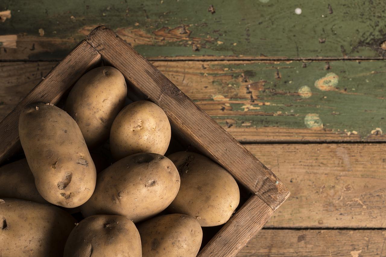 Районированные сорта картофеля по регионам