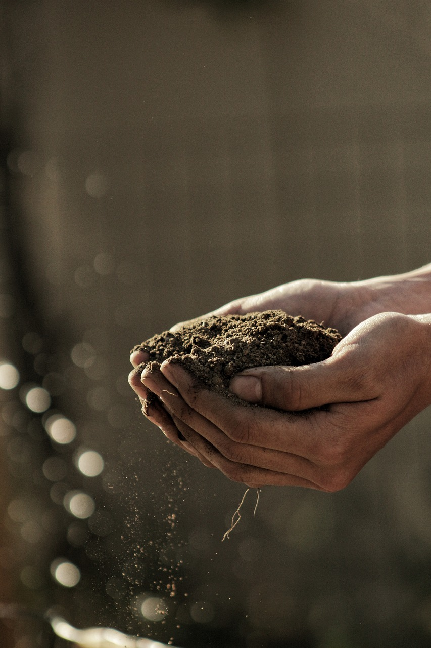 Всё о почве - каталог почвоведа