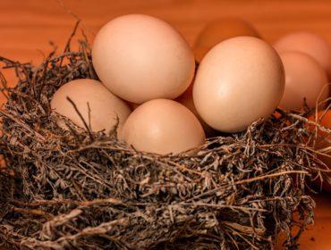 Продукт питания — яйца, польза яиц для организма