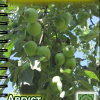 Август — новый номер журнала «Свой домик в деревне» №7-2013