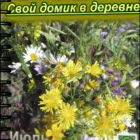 Июль — журнал «Свой домик в деревне» №6-2013