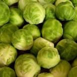 Брюссельская капуста: свойства, польза, как приготовить