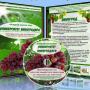 Домашний виноград-курс для всех и каждого