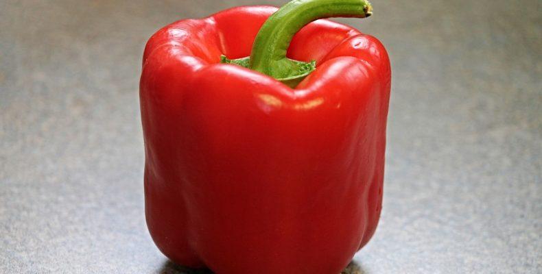 Выращивание сладкого перца в домашних условиях — опыт читателя
