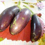 Острые баклажаны с чесноком на зиму — лучший рецепт