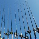Когда ожидается хороший клев? Календарь рыбака на ноябрь 2015