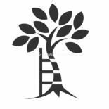 Сад: болезни плодовых деревьев