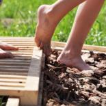 Сенсорный сад своими руками — ландшафтный дизайн с пользой для здоровья