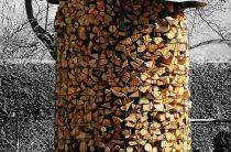 Как сложить дрова красиво и правильно? 15 фото
