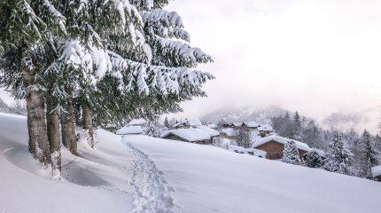Самые красивые фото снега в природе