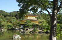 Японский стиль  — дизайн сада