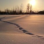 Народные приметы о погоде, о природе. Декабрьские фото