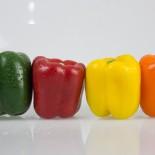 Сладкий перец – гибриды и описание