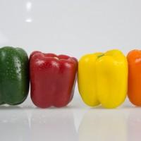 Сладкий перец — гибриды и описание
