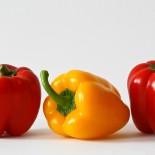 Перец сладкий – сорта для Сибири