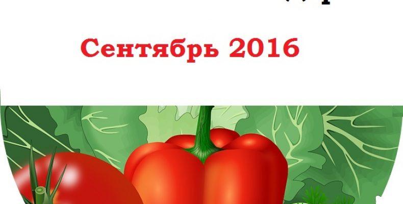 Календарь огородника на сентябрь 2016