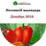 Посевной календарь садовода-огородника на декабрь 2016