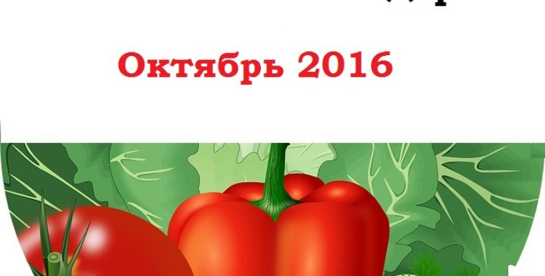 Календарь садовода и огородника на октябрь 2016
