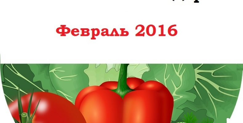 Посевной календарь садовода-огородника на февраль 2016