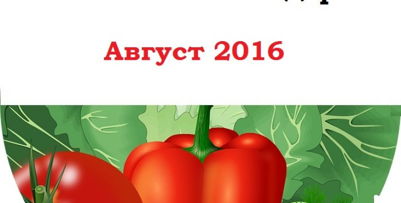 Посевной календарь на август 2016