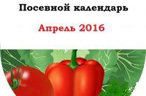 Посевной календарь садовода и огородника на апрель 2016