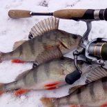 Календарь рыбака на декабрь 2016