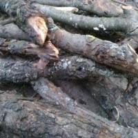 Как сделать древесный уголь?
