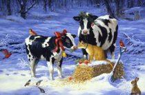 Корова зимой