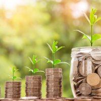 Ставка имущественного налога 2017: все о ставках и почему вырос налог