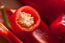 Лечо из перца: 20 рецептов приготовления лечо на зиму