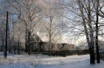 Переезд в деревню: Челябинск — деревня Ваганово. Цикл «Хочу жить в деревне», выпуск 4